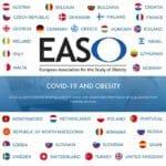 EASO Members Flags